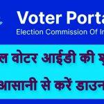 Download Digital Voter ID