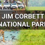 Jim Corbett National Park Ramnagar